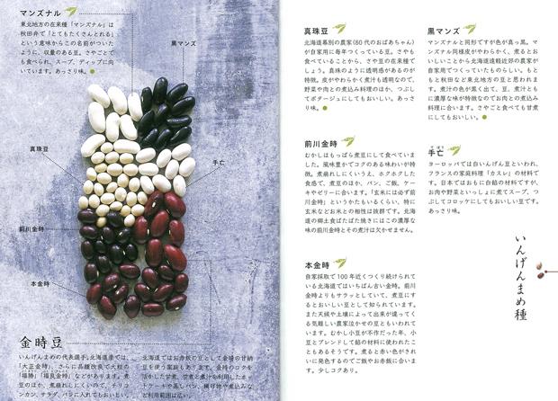 インゲン豆3