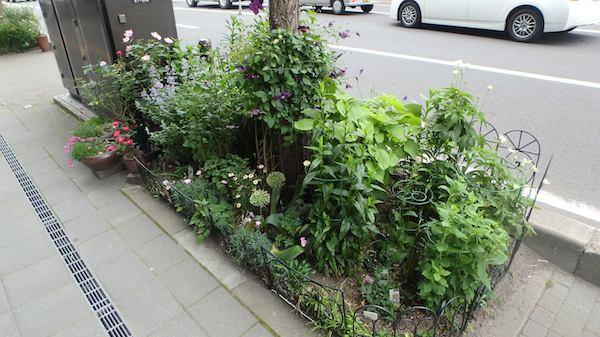 ガーデンタイプ