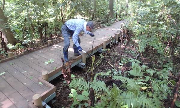 木道の清掃