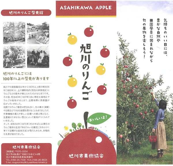 旭川のリンゴ1