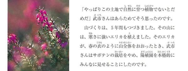 夢の庭づくり5