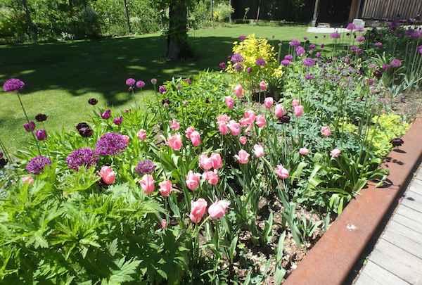 ガレット花壇