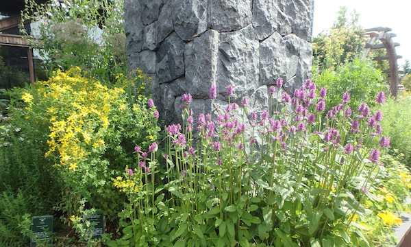 くらしの花園