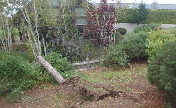 カントリーハウスの庭園