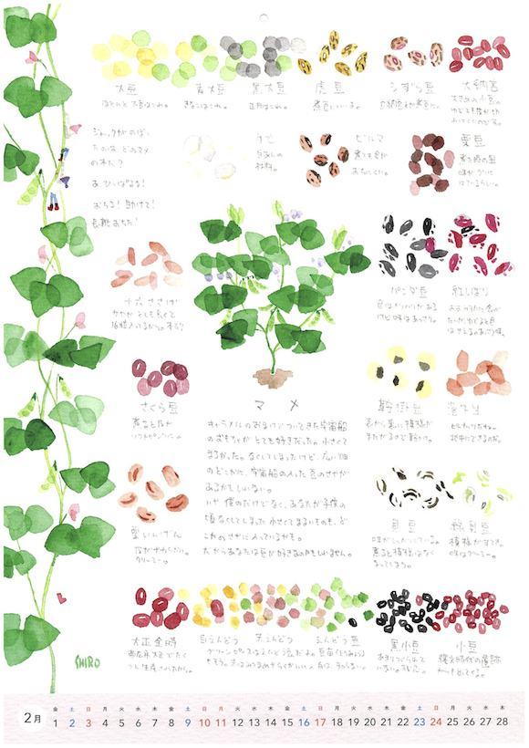 野菜カレンダー