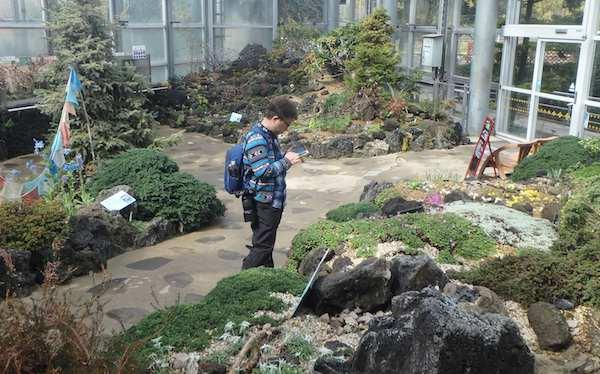 高山植物室