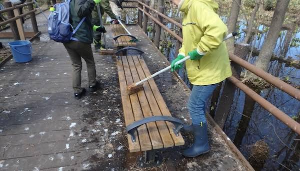 ベンチの掃除