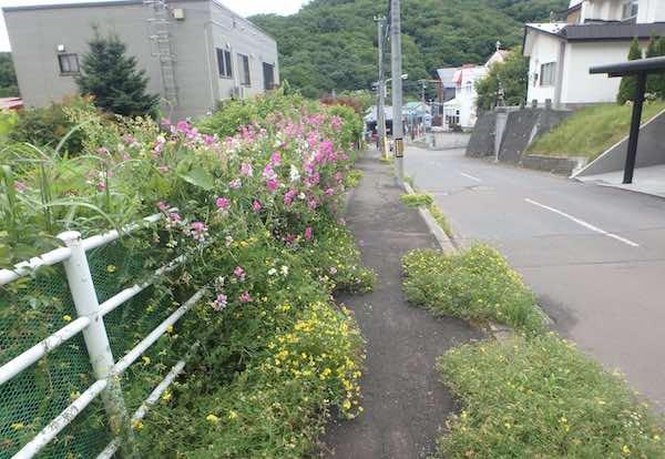 バス停への道