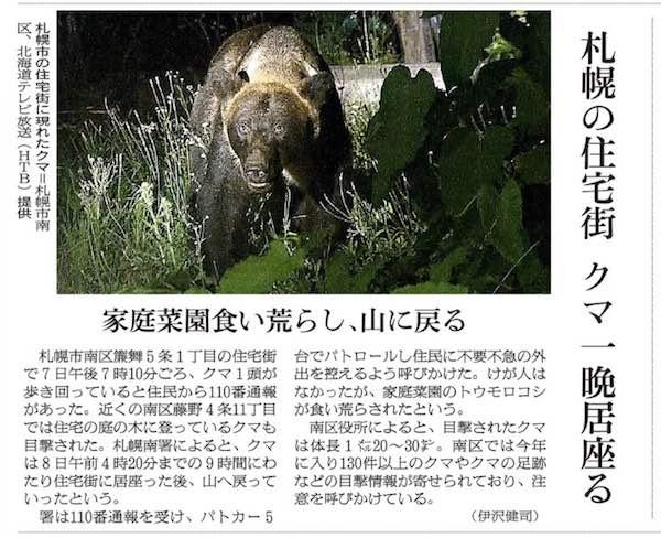 藤野のクマ