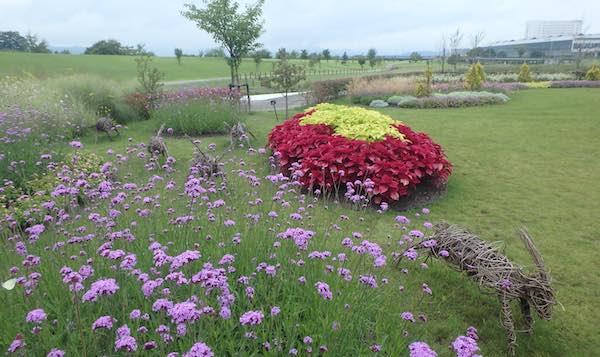 パレット花壇