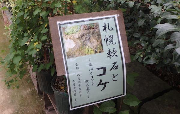 軟石とコケ