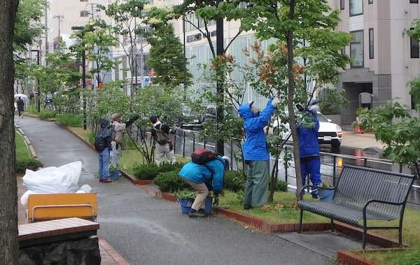 雨中の作業