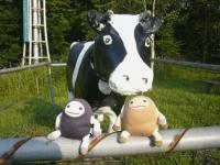 牛となまけ★