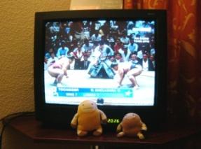 ウィーンのテレビでやっていた日本の相撲