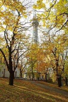 黄葉の中の展望台