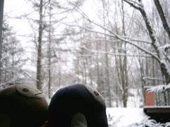 雪見のなまけ達 2010年1月
