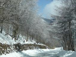 2010年2月 峠道にて
