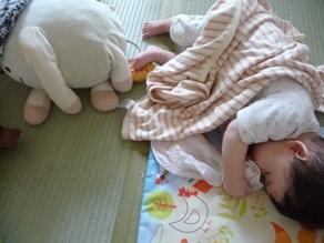おーちゃんとお昼寝