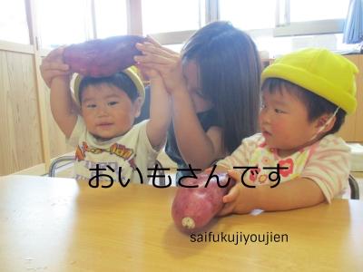 10野菜.jpg