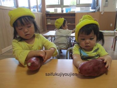 12野菜.jpg