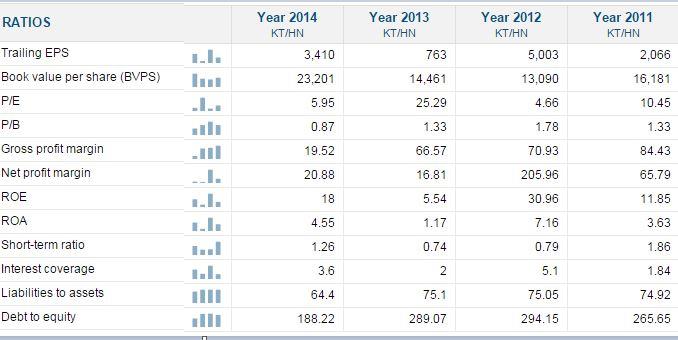 ホーチミン市インフラ投資株式会社 CII  Ratio.JPG