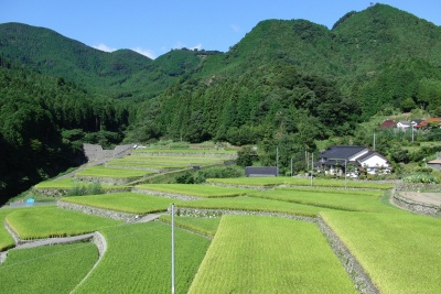 収穫の秋−竹地区の棚田
