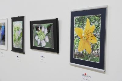 フォトプラス 盛岡 写真展「内丸界隈の花と風景」