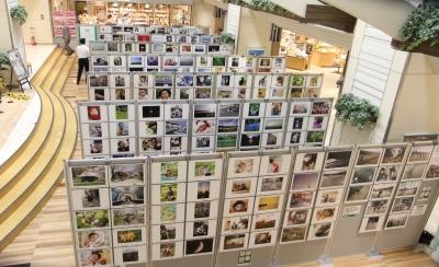 盛岡 カジュアルフォトスタジオ フォトプラス 30,000人の写真展 フェザン