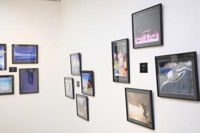 盛岡 カジュアルフォトスタジオ フォトプラス 撮影 写真展 匿名希望の5人展