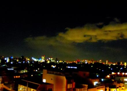 s-2011 Jan28 037.jpg