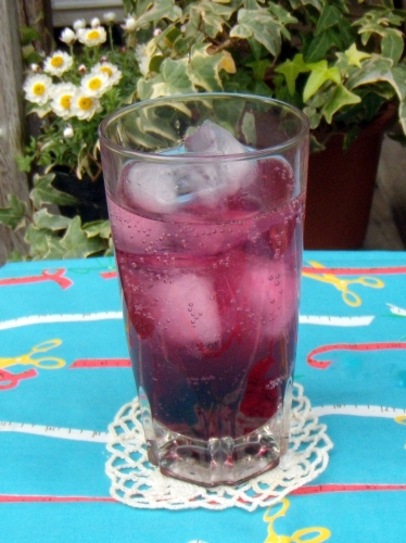 s-2011 Mar6 berry soda 007.jpg