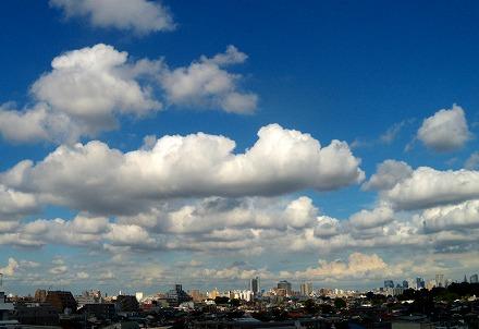 s-2011Aug8 004.jpg
