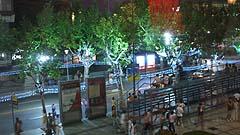 picture - 上海旅遊節01