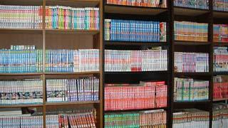 picture - マンガの本棚