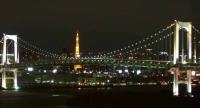 これが夜の景色
