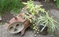 植木鉢もオリジナル