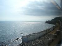 列車から見える小樽の海