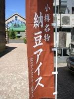 怪しい納豆アイスの旗