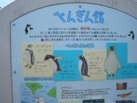 ペンギン館の入口にある手作り看板