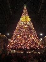 ディズニーランドの夜のクリスマスツリー