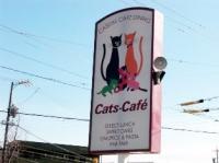 『キャッツカフェ』の看板は猫がいっぱい