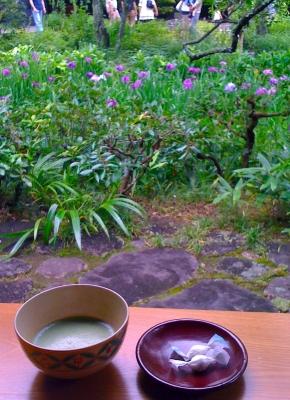 花菖蒲と抹茶。