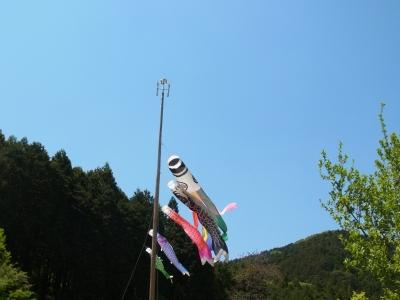 RIMG1330.JPG