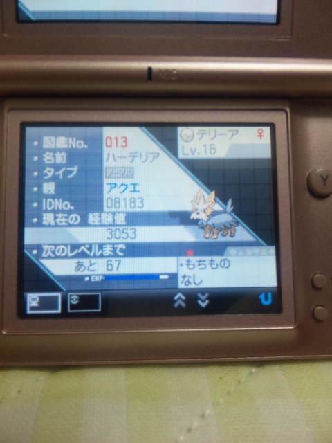 SBSH1081.JPG