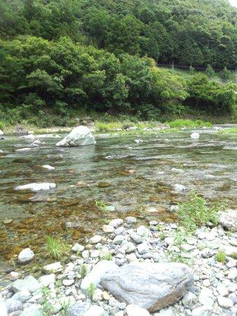 鮎喰川in徳島は最高でした!