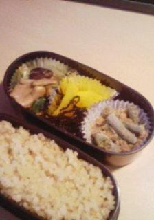 お弁当20080611