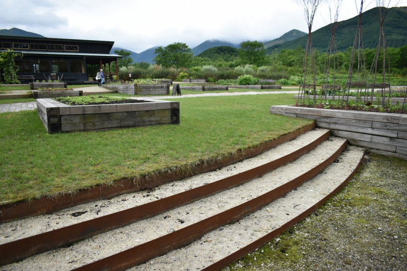千年の森 北海道