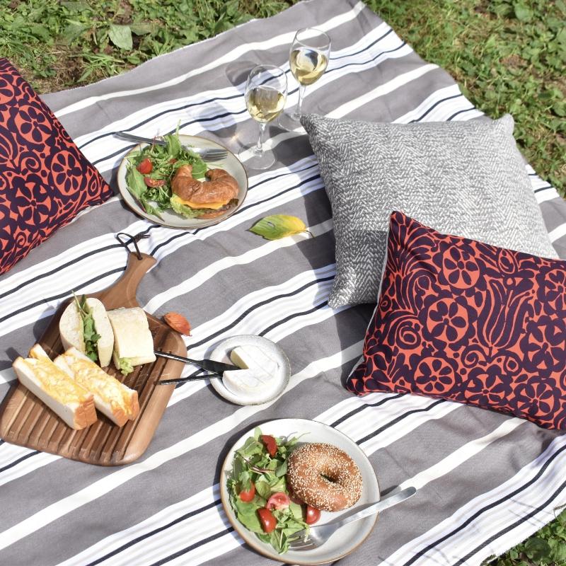 クッションとピクニック