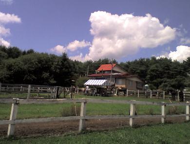 清里らへんの牧場