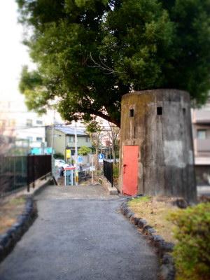 カフェしずく前の散歩道